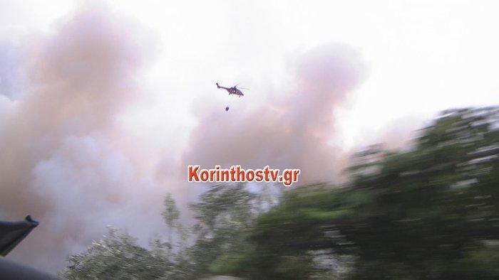 Περιορίστηκε η φωτιά σε δασική έκταση στο Ρυτό Κορινθίας (φωτό) - εικόνα 3