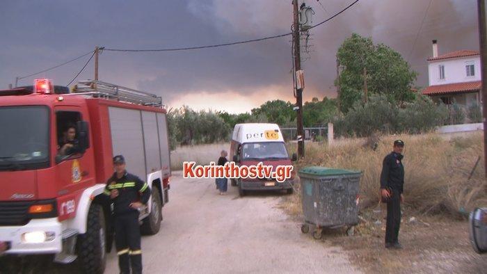 Περιορίστηκε η φωτιά σε δασική έκταση στο Ρυτό Κορινθίας (φωτό) - εικόνα 4