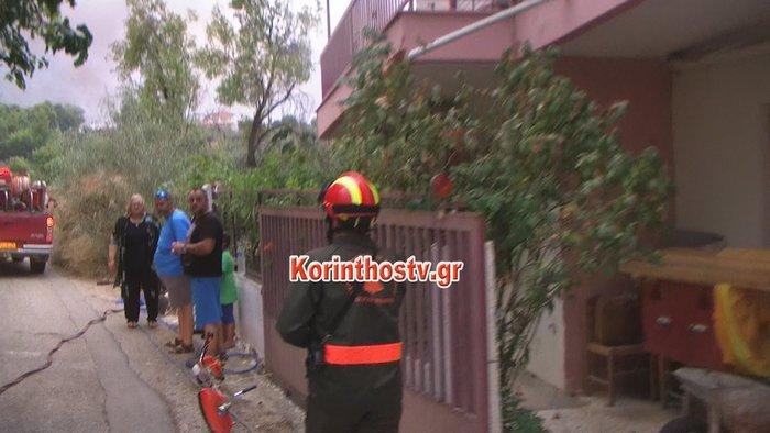 Περιορίστηκε η φωτιά σε δασική έκταση στο Ρυτό Κορινθίας (φωτό) - εικόνα 5
