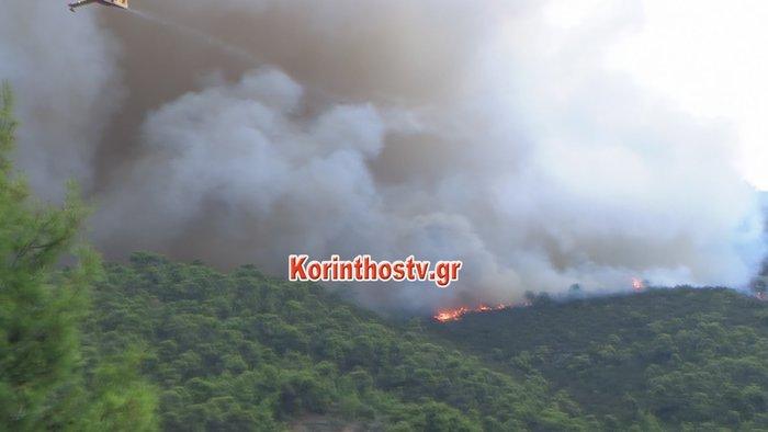 Περιορίστηκε η φωτιά σε δασική έκταση στο Ρυτό Κορινθίας (φωτό) - εικόνα 7