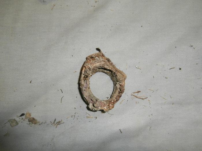 Πιάστηκαν επί τω έργω έξι δύτες στο Λιμένι, με αρχαία αντικείμενα - εικόνα 2