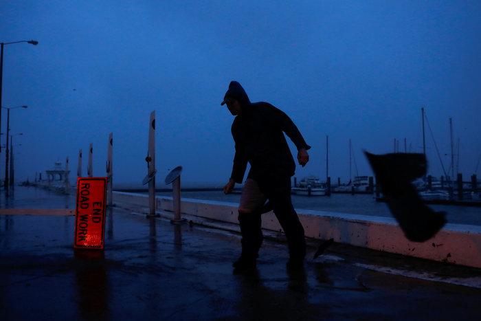 O τυφώνας Χάρβεϊ έβγαλε ως και τους... κροκόδειλους στο δρόμο! - εικόνα 5
