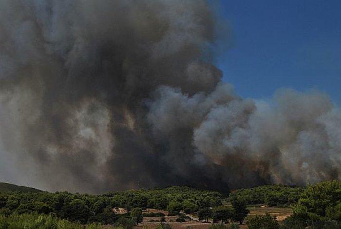 Η μαφία των εμπρηστών: 82 φωτιές στη Ζάκυνθο το καλοκαίρι - εικόνα 2