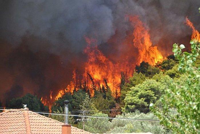 Η μαφία των εμπρηστών: 82 φωτιές στη Ζάκυνθο το καλοκαίρι - εικόνα 4