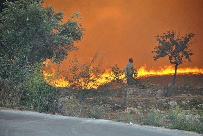 Η μαφία των εμπρηστών: 82 φωτιές στη Ζάκυνθο το καλοκαίρι - εικόνα 7