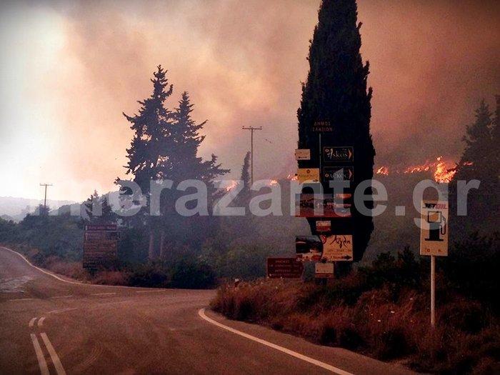 Η μαφία των εμπρηστών: 82 φωτιές στη Ζάκυνθο το καλοκαίρι - εικόνα 9