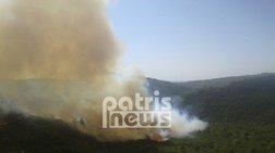 Νέα δασική πυρκαγιά στο γεράκι Αμαλιάδας (ΒΙΝΤΕΟ)