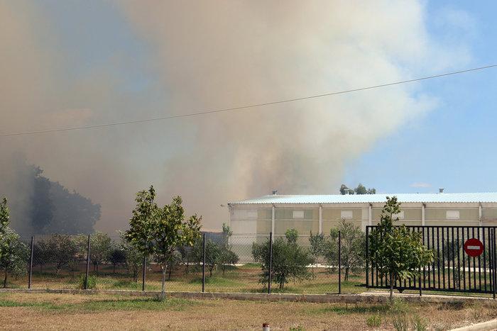 Δύο πύρινα μέτωπα στην Πρέβεζα: Στάχτη εργοστάσιο και θερμοκήπια - εικόνα 6