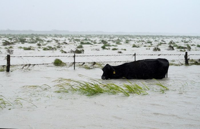 Μειώνεται η στάθμη των νερών στο Χιούστον - Ζημιές σε 40.000 σπίτια (ΦΩΤΟ) - εικόνα 2