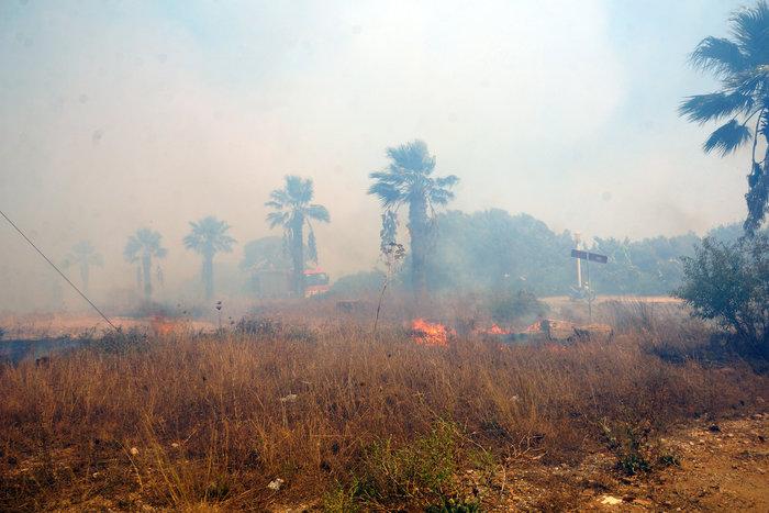 Φωτιά κοντά σε κατοικημένη περιοχή ξέσπασε στη Ρόδο - εικόνα 6