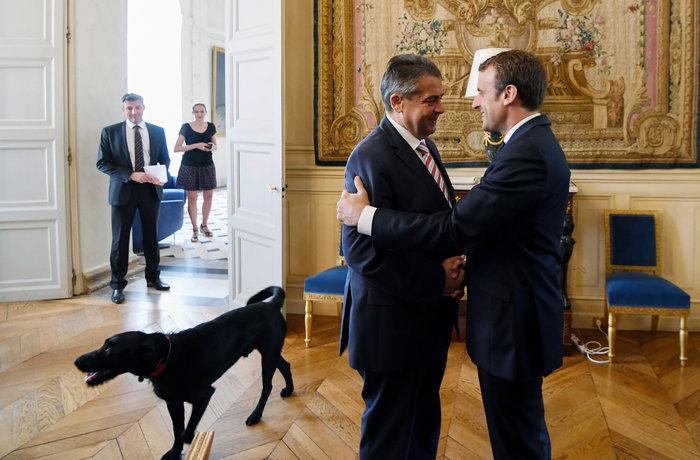 Τα μαύρα σκυλιά του Μακρόν & του Πούτιν και οι...γερμανοί - εικόνα 3