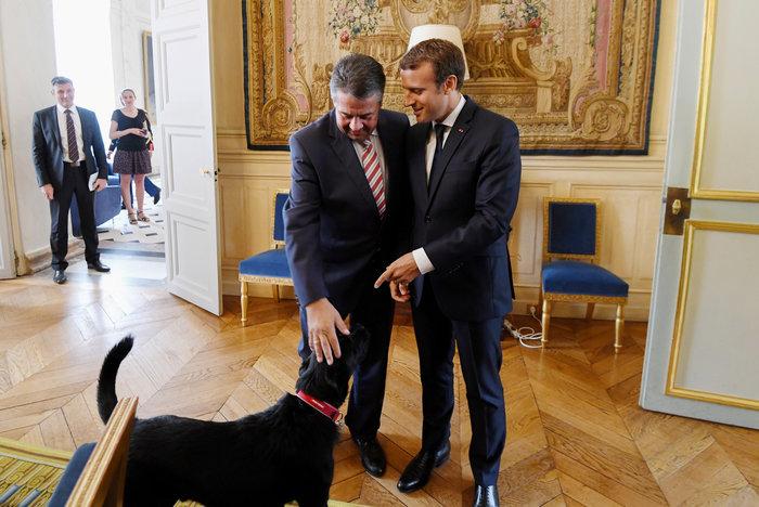 Τα μαύρα σκυλιά του Μακρόν & του Πούτιν και οι...γερμανοί - εικόνα 2