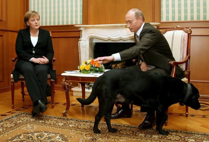 Τα μαύρα σκυλιά του Μακρόν & του Πούτιν και οι...γερμανοί - εικόνα 6
