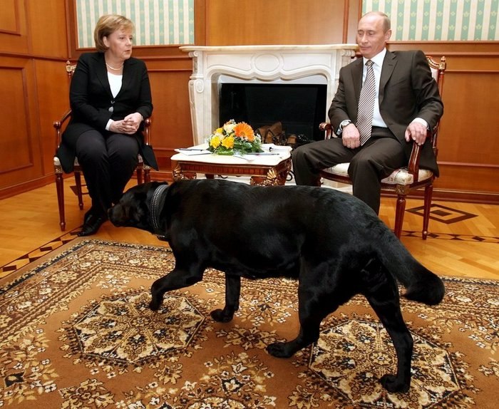 Τα μαύρα σκυλιά του Μακρόν & του Πούτιν και οι...γερμανοί - εικόνα 7