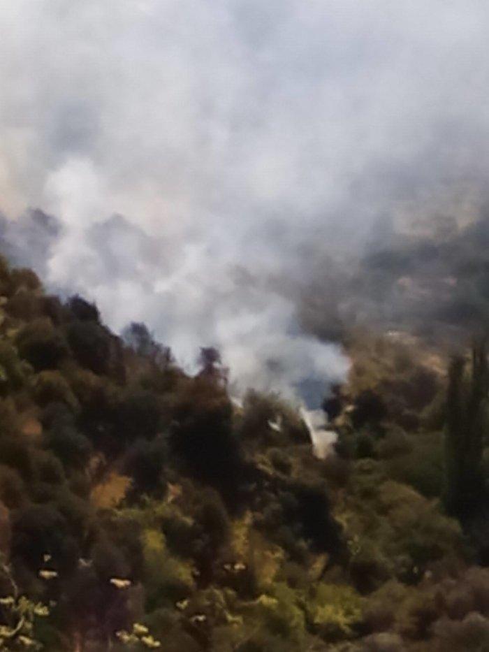 Φωτιά στη Νάξο ανάμεσα σε δυο χωριά - Κινδύνευσε κατοικία Βίντεο - εικόνα 3