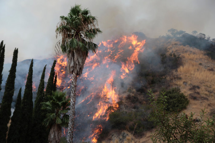 La Tuna: Η χειρότερη πυρκαγιά στην ιστορία του Λος Αντζελες - εικόνα 3