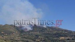 Πάτρα: Πυρκαγιά στην περιοχή Άνω Καλλιθέα Αχαΐας - Τρεις οι εστίες (Βίντεο)