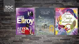 toc-books-o-upokosmos-twn-ipa-i-oduni-tis-apwleias-kai-mia-epanekdosi