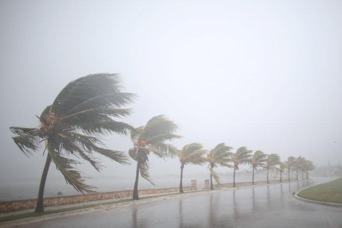 Eλληνας δήμαρχος στη Φλόριντα: «Να πάνε όλοι στα καταφύγια» - εικόνα 2