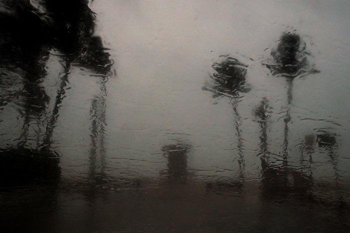 Η Ιρμα στη Φλόριντα: Τι κατέγραψε ο φακός του Reuters - εικόνα 9