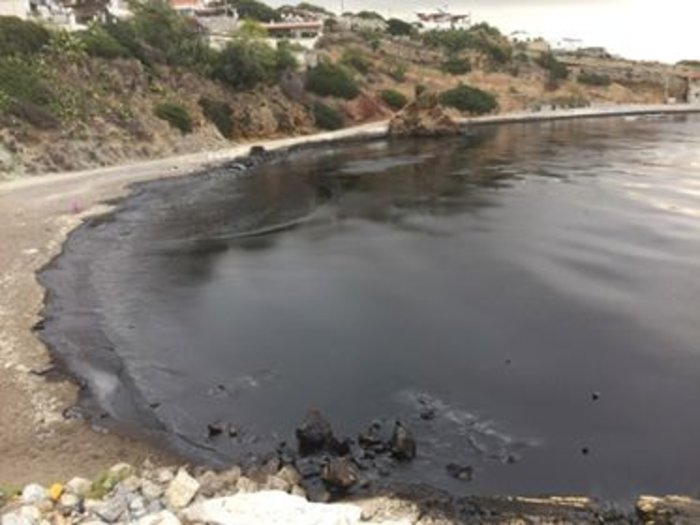 Μαύρισαν οι παραλίες στη Σαλαμίνα- συγκλονιστικές εικόνες