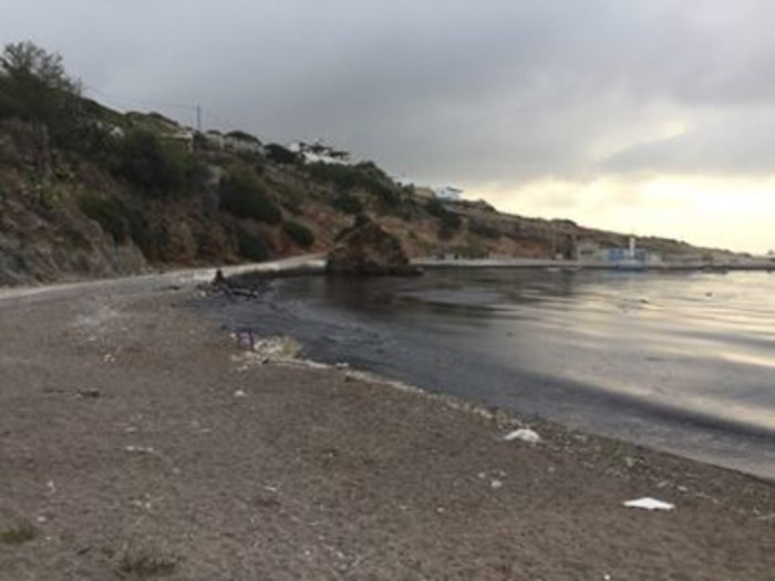 Μαύρισαν οι παραλίες στη Σαλαμίνα- συγκλονιστικές εικόνες - εικόνα 2