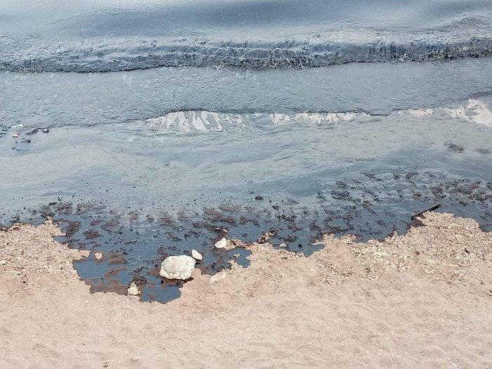 Μαύρισαν οι παραλίες στη Σαλαμίνα- συγκλονιστικές εικόνες - εικόνα 8