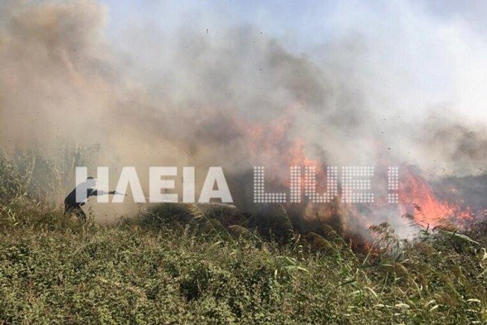 Ξέσπασε φωτιά στο Σκουροχώρι Ηλείας (ΦΩΤΟ)