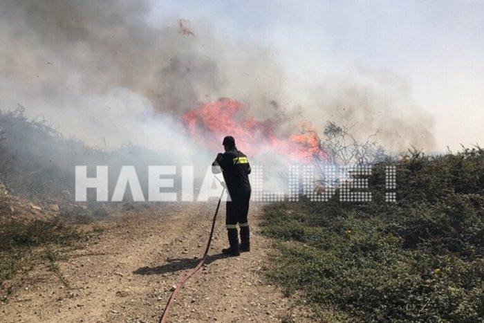 Ξέσπασε φωτιά στο Σκουροχώρι Ηλείας (ΦΩΤΟ) - εικόνα 3