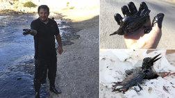 Σαλαμίνα: Φωτορεπόρτερ του Reuters βούτηξε στο μαζούτ για να σώσει μια ζωή