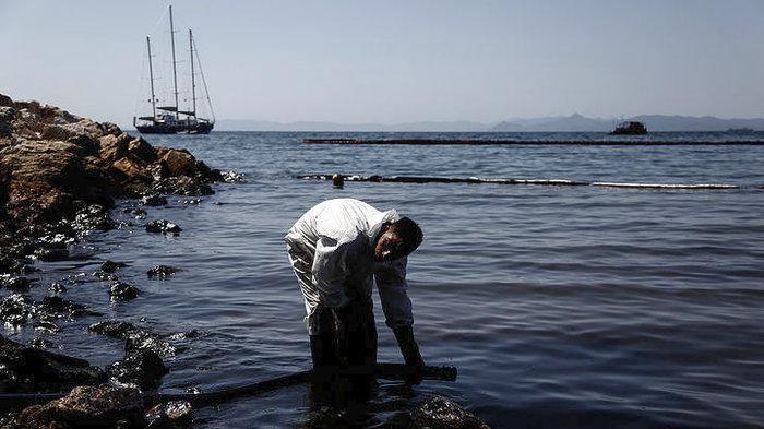 Ποιος θα πληρώσει τη ζημιά για το μαζούτ που έπνιξε τις ακτές