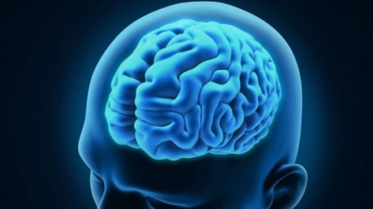 """Ετοιμάζεται ερευνητικό """"CERN"""" για να μελετήσει τον εγκέφαλο"""