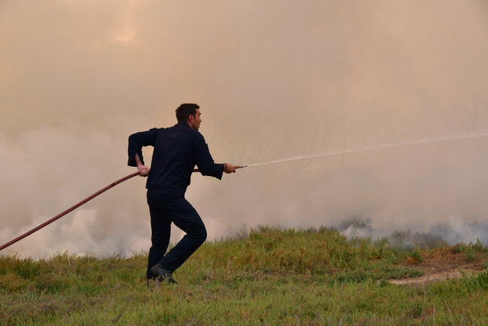 Πυρκαγιά στην παραλιακή οδό Ναυπλίου - Νέας Κίου [φωτό]