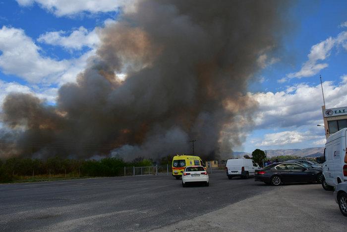 Πυρκαγιά στην παραλιακή οδό Ναυπλίου - Νέας Κίου [φωτό] - εικόνα 3