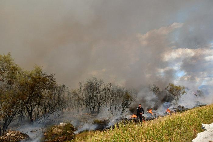 Πυρκαγιά στην παραλιακή οδό Ναυπλίου - Νέας Κίου [φωτό] - εικόνα 5