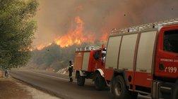 Φωτιά στην Αταλάντη: Επιχειρεί μεγάλη δύναμη της πυροσβεστικής