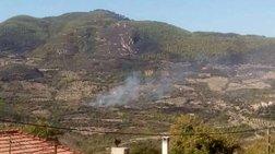 Μάχη σε τρία πύρινα μέτωπα στην Ηλεία