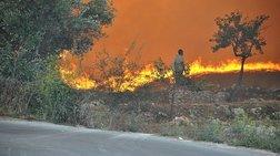 Ο «κοριός» της ΕΥΠ ψάχνει τους εμπρηστές που έκαψαν τη Ζάκυνθο