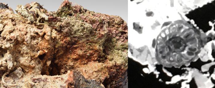 Συσσωμάτωμα σιδερένιου αντικειμένου, μέσα στο οποίο, όπως έδειξε η ραδιογραφία, υπάρχει μία μεσόμφαλη μεταλλική φιάλη, το είδος μετάλλου της οποίας θα φανεί μετά την απελευθέρωσή της από τον επίπαγο