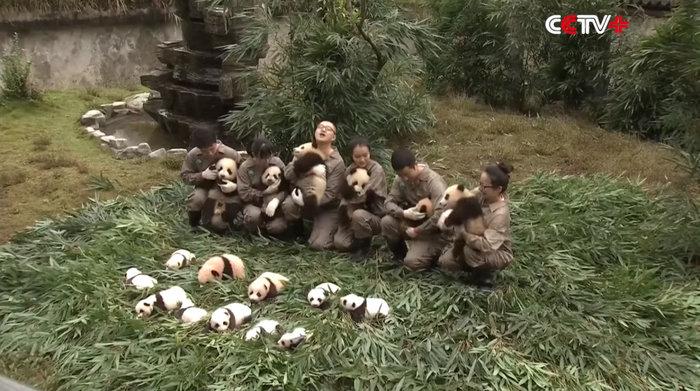 Πάρτι για 42 μωρά πάντα που γεννήθηκαν στην Κίνα - εικόνα 4