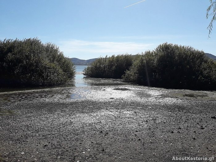 Μετά την Παμβώτιδα «στεγνώνει» και η λίμνη Καστοριάς [φωτό] - εικόνα 3