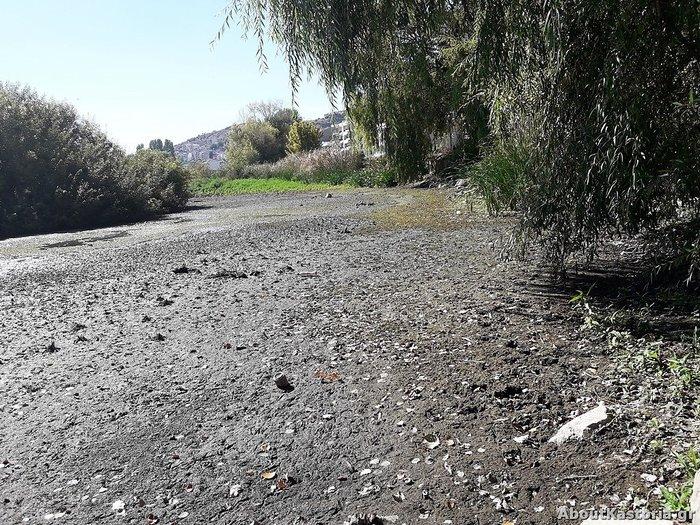Μετά την Παμβώτιδα «στεγνώνει» και η λίμνη Καστοριάς [φωτό] - εικόνα 5