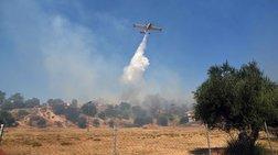 Επικίνδυνη φωτιά σε προστατευόμενη περιοχή στην Αχαϊα