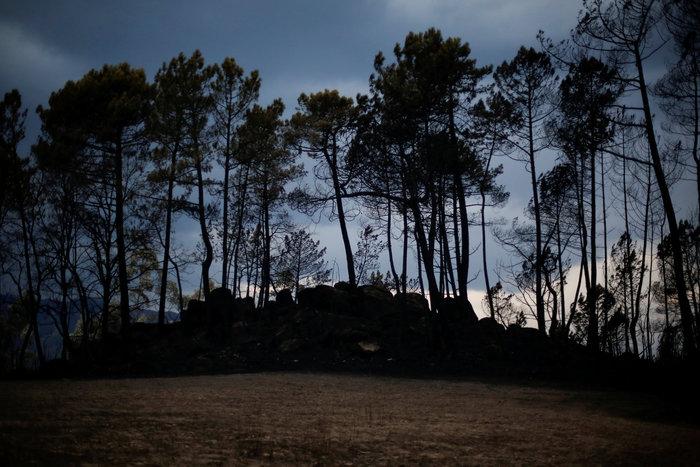 Πορτογαλία: 45 νεκροί από τις φωτιές, παραιτήθηκε η υπουργός Εσωτερικών - εικόνα 4