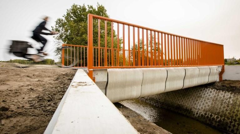 Αποτέλεσμα εικόνας για Η πρώτη γέφυρα από τρισδιάστατο εκτυπωτή άνοιξε για το κοινό στην Ολλανδία
