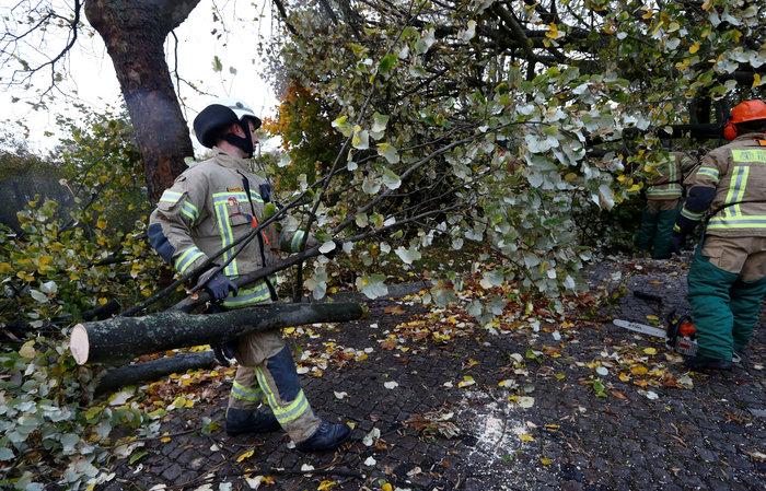 Ανεμοι 180 χλμ προκάλεσαν χάος και νεκρούς σε Γερμανία-Τσεχία - εικόνα 5