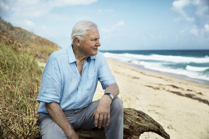 Blue Planet II: Ο Sir David Attenborough επιστρέφει στην COSMOTE TV