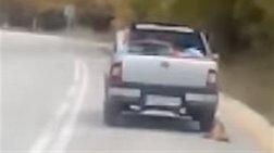 Αθωώθηκε ο οδηγός στα Καλάβρυτα που έσερνε τον σκύλο με το αγροτικό του