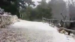 Έπεσαν τα πρώτα χιόνια στην Πάρνηθα – Δείτε το βίντεο