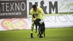 Απρόσμενος «επισκέπτης» για λίγο σε ματς στο «Θ. Βαρδινογιάννης» - Εικόνες